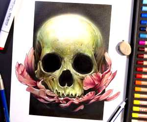 Skull color drawing by Craig Deakes