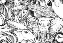 Animal kingdom drawing by Mirik Bodliak