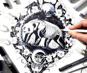 1600, Panda drawing by Pixie Cold