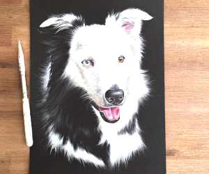 Doggie drawing by Stephen Ward